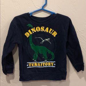 Dinosaur territory sweatshirt